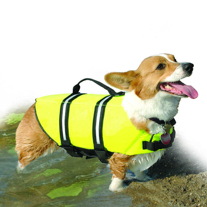 Pawz - DOGGY LIFE JACKET XSmall Yellow - Click to enlarge