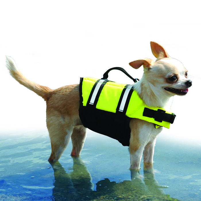 Pawz - DOGGY LIFE JACKET Small Yellow - Click to enlarge