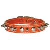 SPIKE & STUD COLLAR 19mm x 51cm Orange - Click for more info