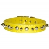 SPIKE & STUD COLLAR 25mm x 56cm Yellow - Click for more info
