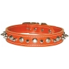 SPIKE & STUD COLLAR 25mm x 66cm Orange - Click for more info