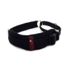 BlackDog WHIPPET COLLAR Black (28-36cm) - Click for more info