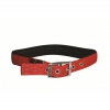 "HONEYCOMB PADDED COLLAR 1"" x 24"" Red (61cm) - Click for more info"