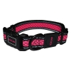 Scream REFLECTIVE ADJ. COLLAR Loud Pink 2.5cm x 35-51cm - Click for more info