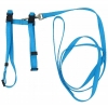"Prestige ADJUSTABLE CAT/PUPPY 3/8"" HARNESS w/LEASH Turquoise - Click for more info"