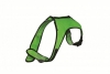 CUSHIONAIRE DOG HARNESS XLarge Green (No Leash) - Click for more info
