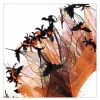 PARTY COLLAR - HALLOWEEN Bats & Spiders X-Large 40cm - Click for more info