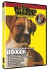 BOXER DVD - Click for more info