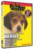 BEAGLE DVD - Click for more info
