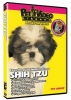 SHIH TZU DVD - Click for more info
