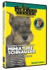 MINIATURE SCHNAUZER DVD - Click for more info