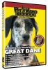 GREAT DANE DVD - Click for more info