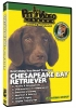 CHESAPEAKE BAY RETRIEVER DVD - Click for more info