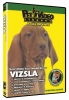 VIZSLA DVD - Click for more info