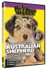 AUSTRALIAN SHEPHERD DVD - Click for more info