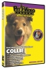COLLIE DVD - Click for more info