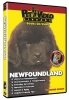 NEWFOUNDLAND DVD - Click for more info