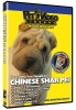 CHINESE SHAR PEI DVD - Click for more info