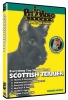 SCOTTISH TERRIER DVD - Click for more info