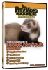 CARING FOR YOUR FERRET - Click for more info