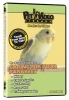 CARING FOR YOUR PARAKEET DVD (Run Time 45 mins) - Click for more info