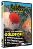 SETTING UP & MAINTAINING GOLDFISH - Click for more info