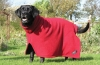 "Bone Dry DRYING DOG COAT Size 7 - 24"" (61cm) - Click for more info"