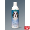 Bio-Groom GROOM 'N FRESH ODOR ELIMINATING SHAMPOO 355mL - Click for more info