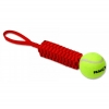 "GNARLYS W/TENNIS BALL 11"" (27cm) - Click for more info"