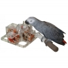 Featherland Paradise FORAGING 4 CORNERS CAGE MOUNT (21.5cm) - Click for more info