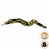 Tuffy - DESERT SERIES SNEAKY THE YELLOW SNAKE - Click for more info